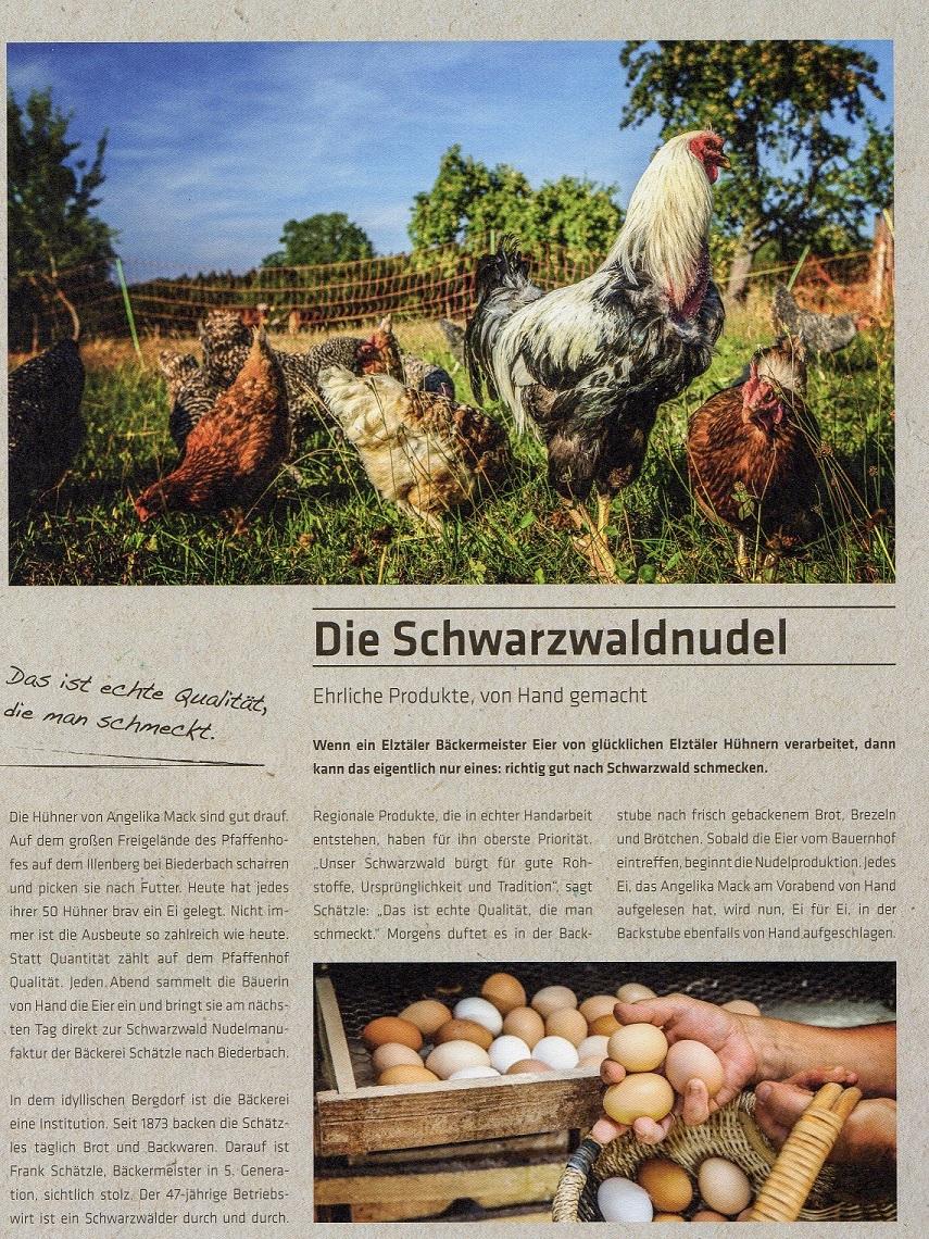 Artikel Schwarzwald Nudelmanufaktur in der Auszeit- Seite 1